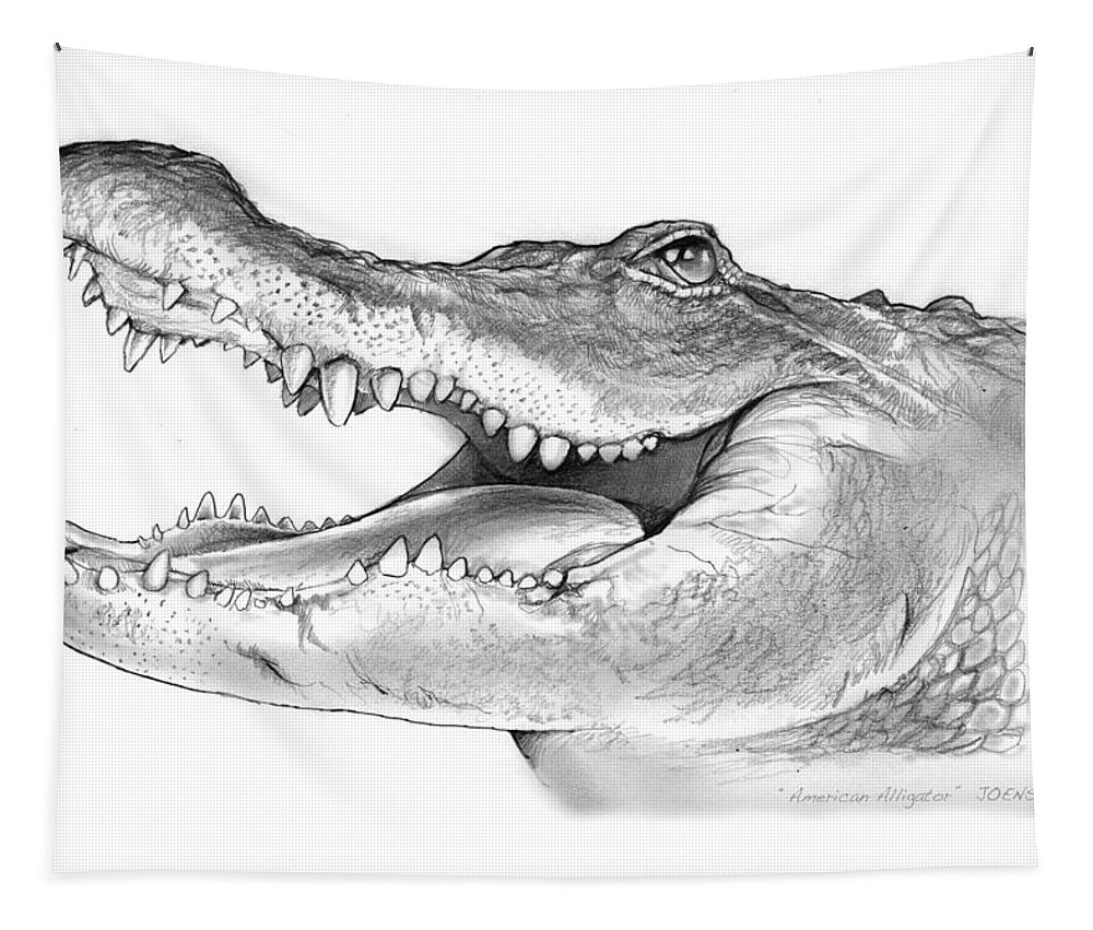 American Alligator Tapestry featuring the drawing American Alligator by Greg Joens