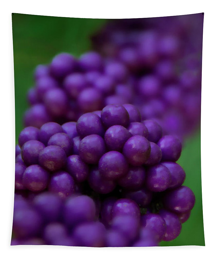 Beautyberry Tapestry featuring the photograph American Beautyberry by Mitch Spence