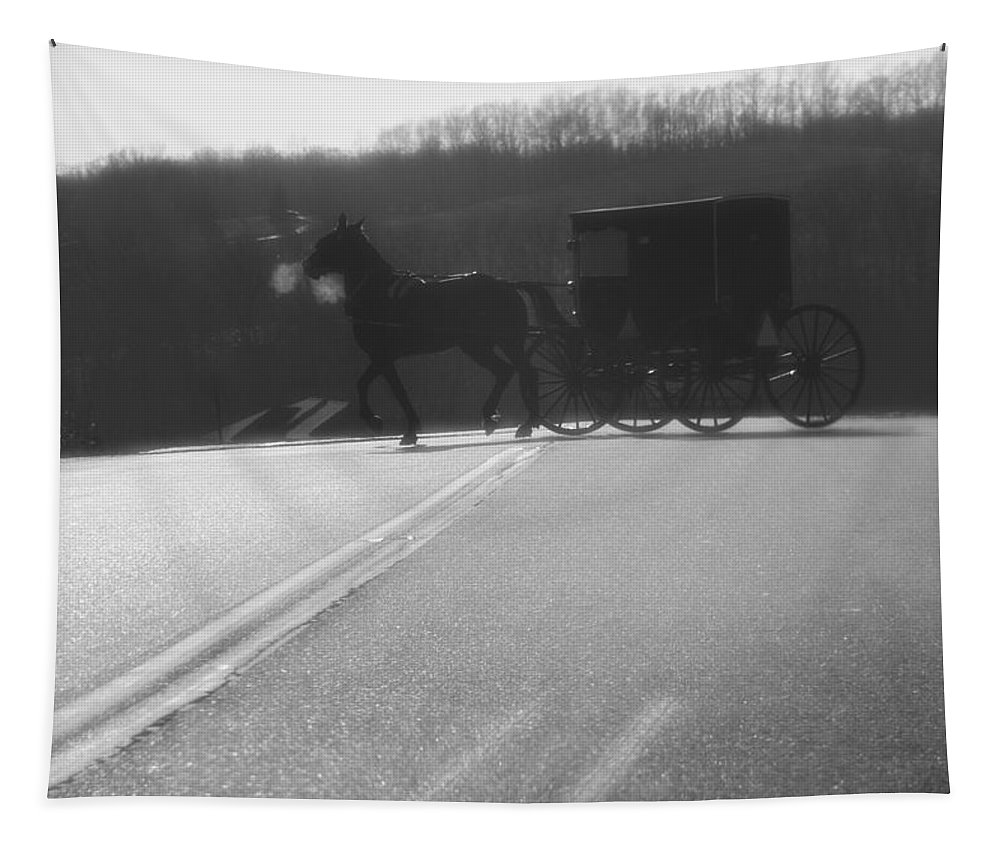 Amish Horse And Buggy In Winter Tapestry featuring the photograph Amish Horse And Buggy In Winter by Dan Sproul