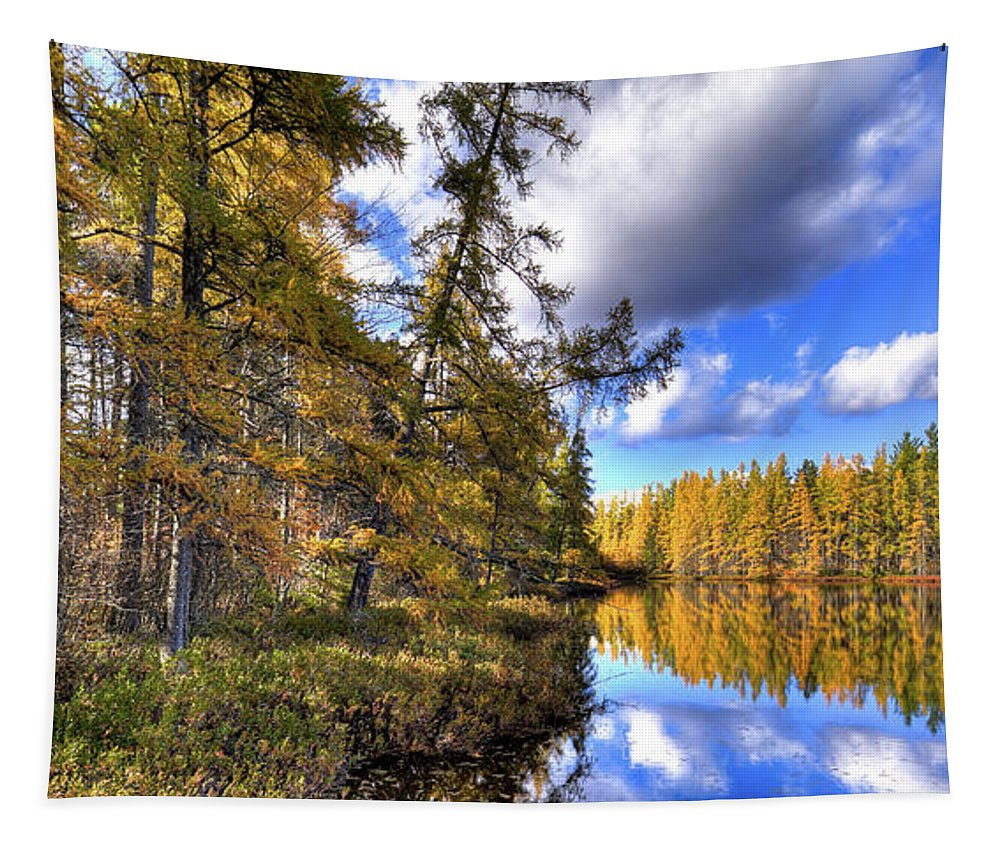 Landscape Tapestry featuring the photograph An Autumn Day At Woodcraft Camp by David Patterson