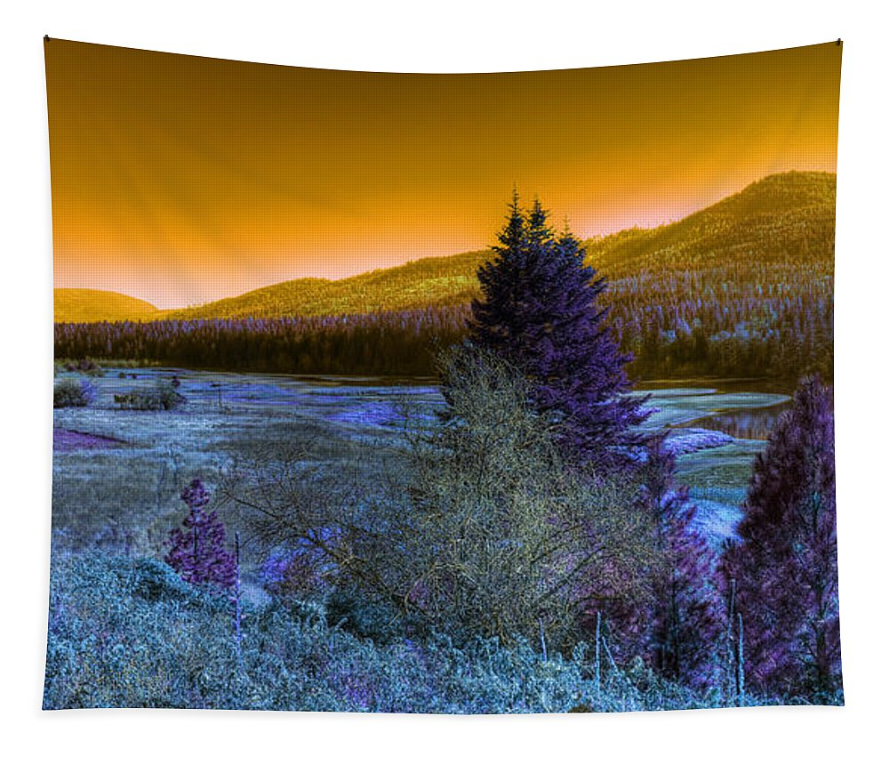 Fantasy Tapestry featuring the photograph An Idaho Fantasy 1 by Lee Santa