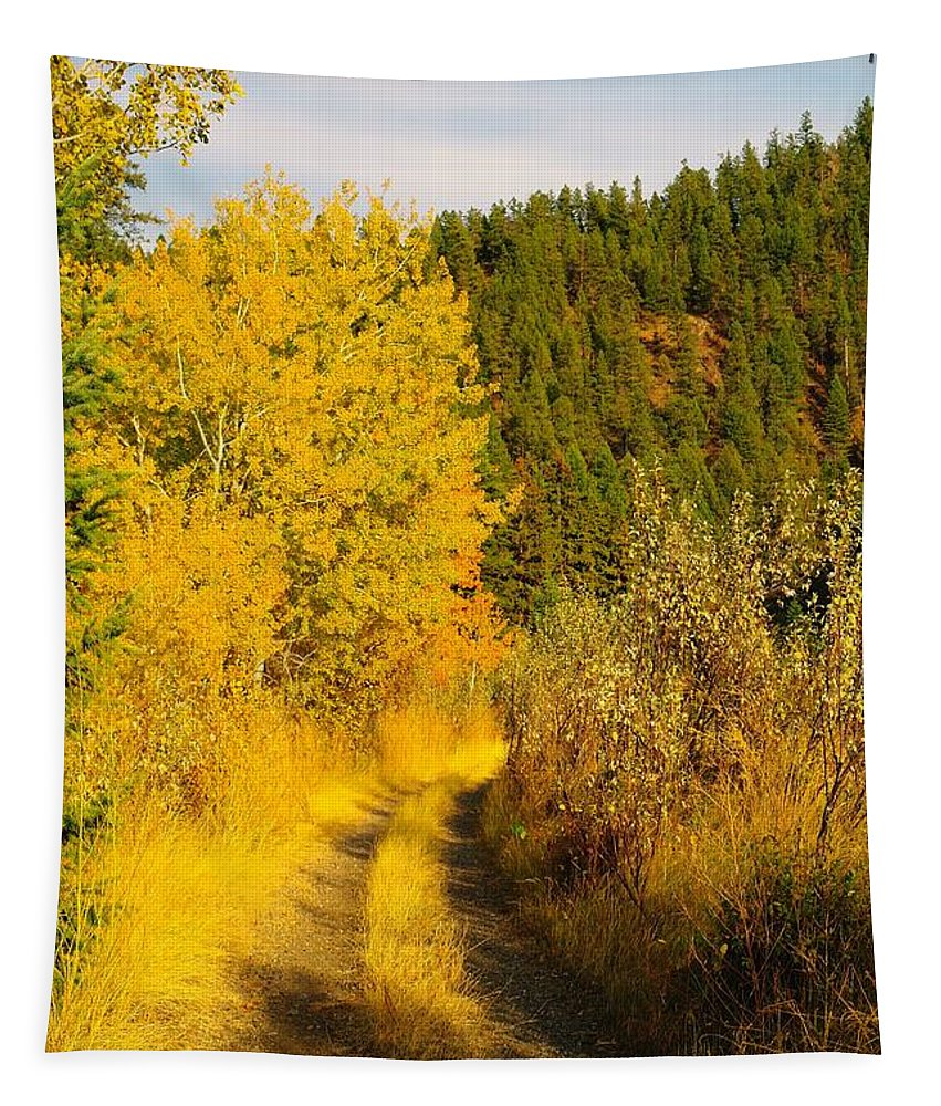 Autumn Tapestry featuring the photograph An October Path  by Jeff Swan