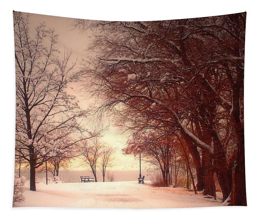 Okanagan Tapestry featuring the photograph An Okanagan Winter by Tara Turner