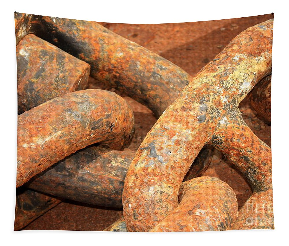 Anchored Tapestry featuring the photograph Anchored 1 by Carol Groenen