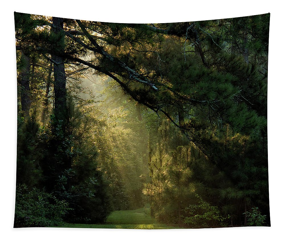 Dawn Tapestry featuring the photograph And A New Day Will Dawn... by Debby Richards
