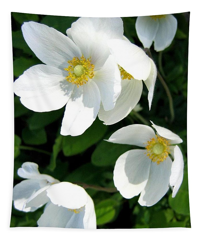 Anemones Tapestry featuring the photograph Anemones by Will Borden
