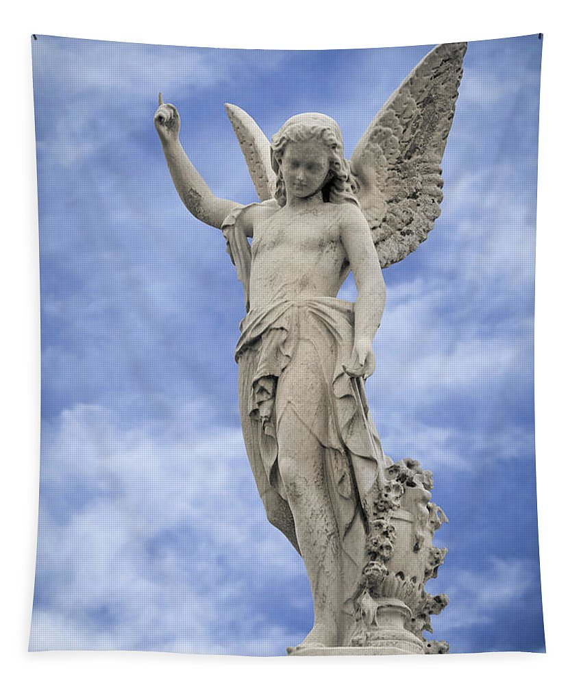 Angelic Peace And Beauty Tapestry featuring the photograph Angelic Peace And Beauty by Dale Kincaid