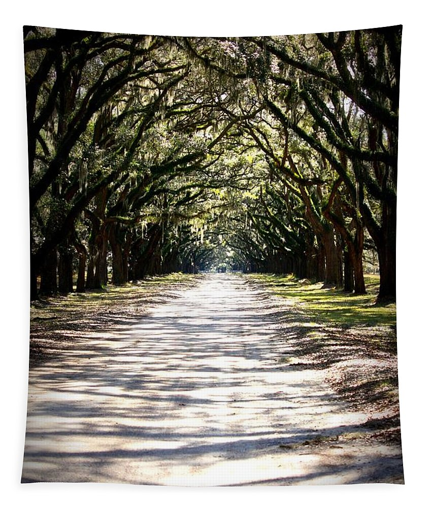 Live Oaks Tapestry featuring the photograph Anticipation by Carol Groenen