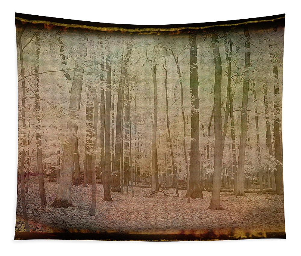 Autumn Tapestry featuring the photograph Antique Amber Golden Woods by Aimee L Maher ALM GALLERY
