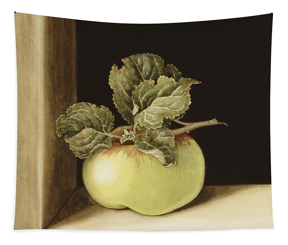Apple Tapestry featuring the painting Apple by Jenny Barron