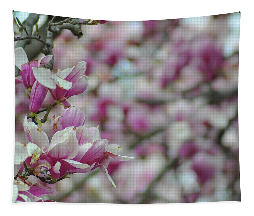 April Tapestry featuring the photograph April Blossoms by Bill Cannon