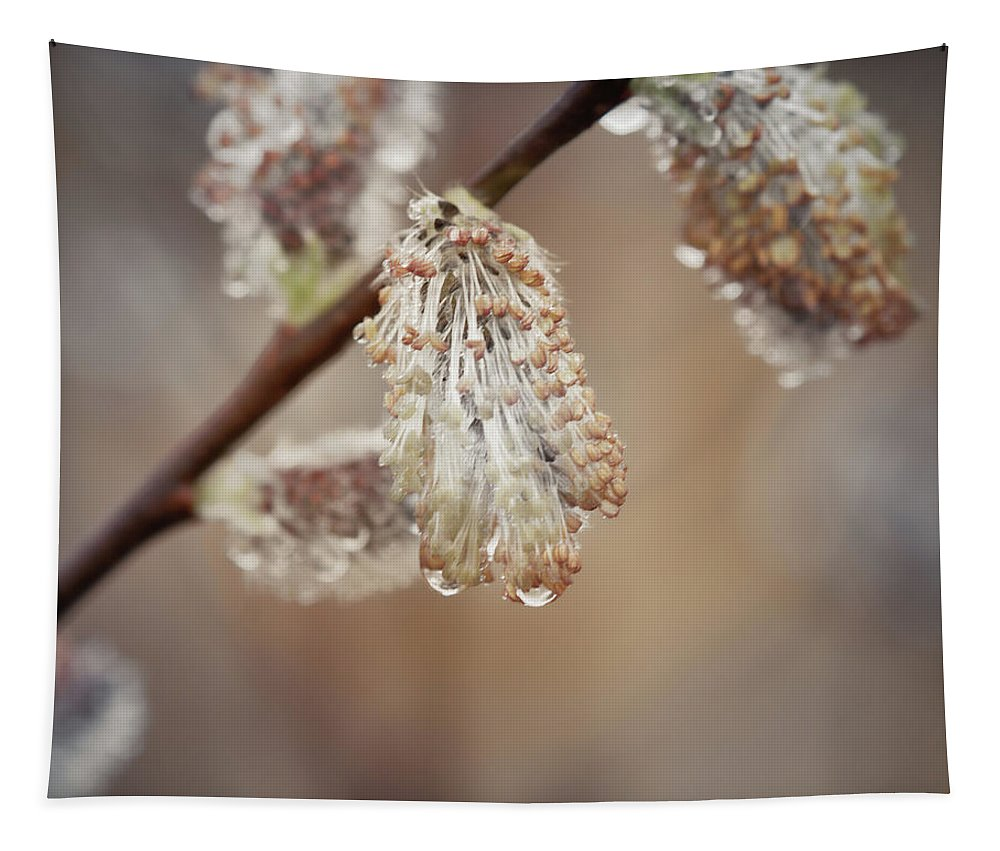 Willow Tapestry featuring the photograph April Showers by Susan Capuano