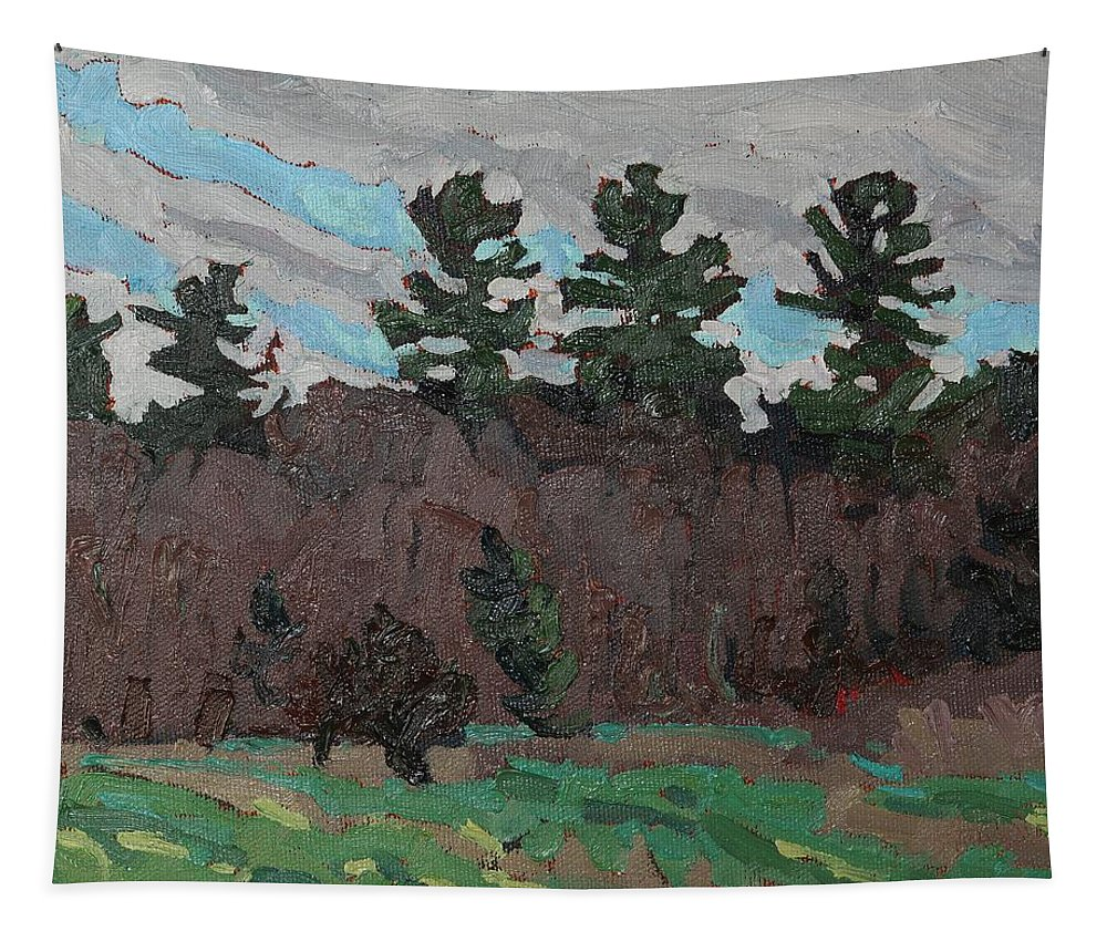 1759 Tapestry featuring the painting April White Pine Forest by Phil Chadwick