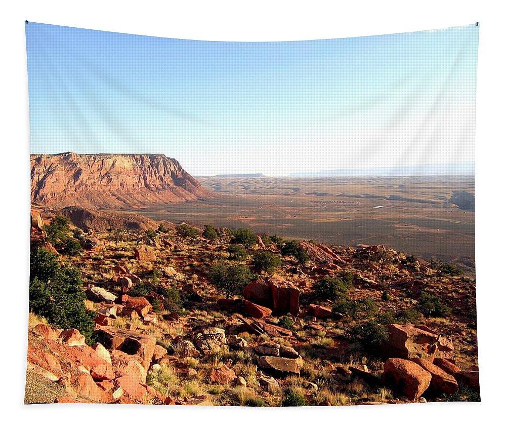 Arizona Tapestry featuring the photograph Arizona 19 by Will Borden