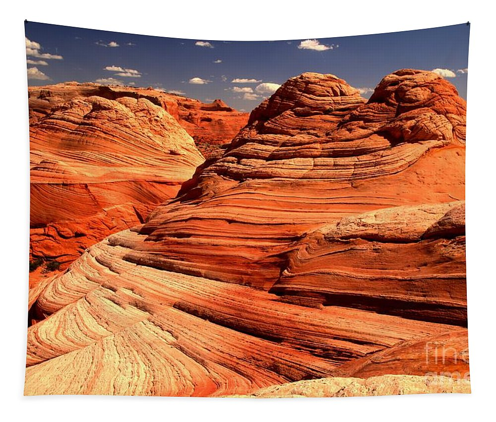 Coyote Buttes Tapestry featuring the photograph Arizona Desert Landscape by Adam Jewell