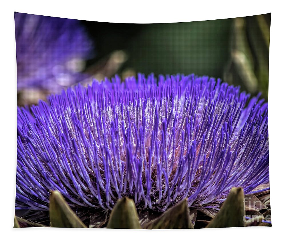 Tapestry featuring the photograph Artichoke Blossom by Elisabeth Lucas