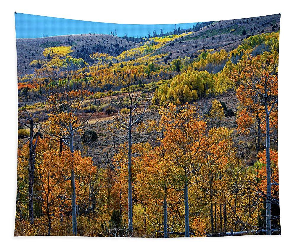 Aspen Tapestry featuring the photograph Aspen Cascades In The Sierra by Lynn Bauer