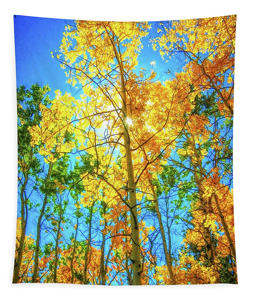 Colorado Tapestry featuring the photograph Aspen Trees by Mike Braun