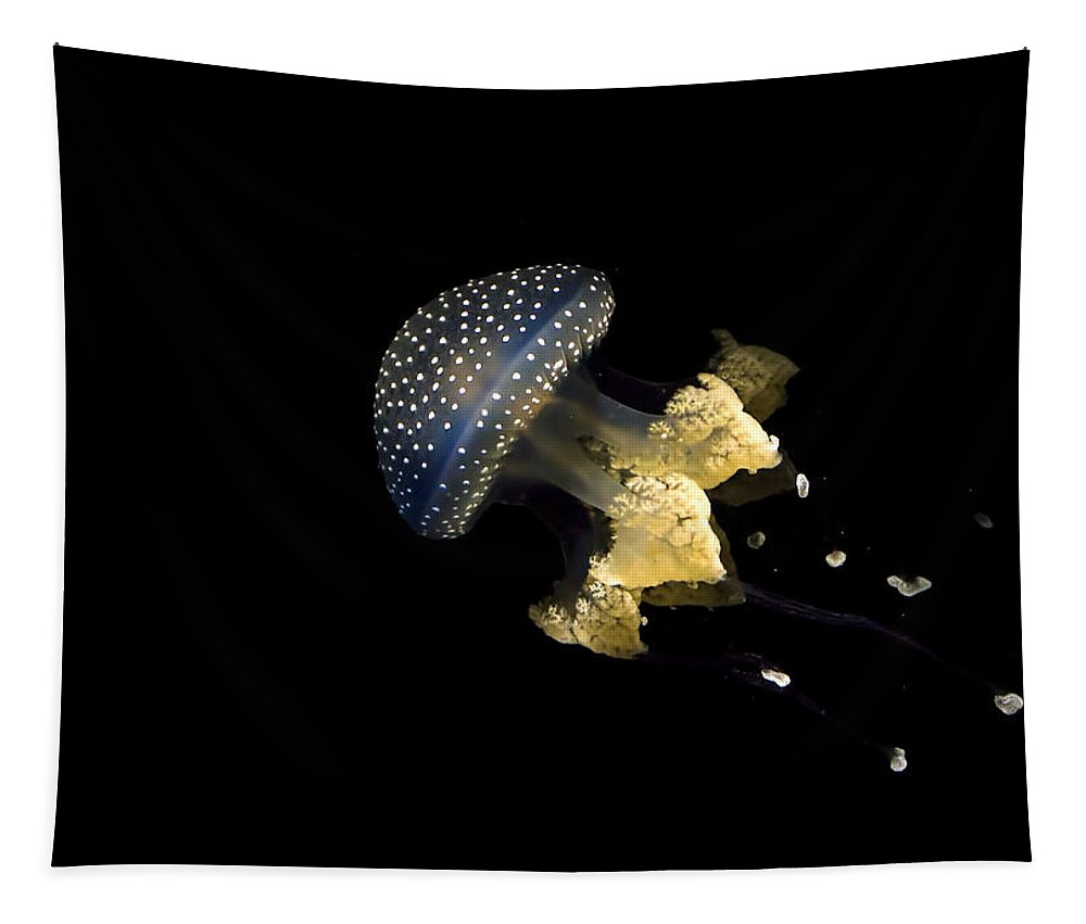 Australian Spotted Jellyfish Tapestry featuring the photograph Australian Spotted Jellyfish by Heather Applegate