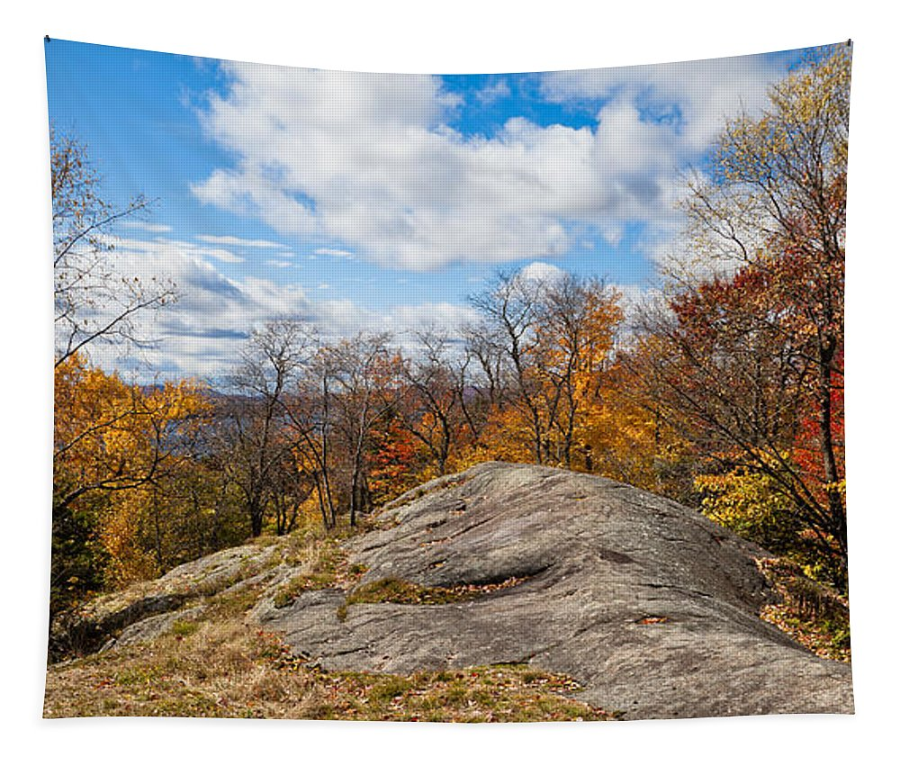Autumn Above Eagle Bay Ny Tapestry featuring the photograph Autumn Above Eagle Bay Ny by David Patterson