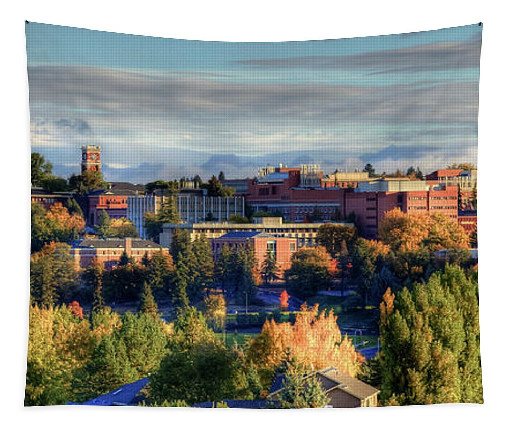 Autumn At Wsu Tapestry featuring the photograph Autumn At Wsu by David Patterson