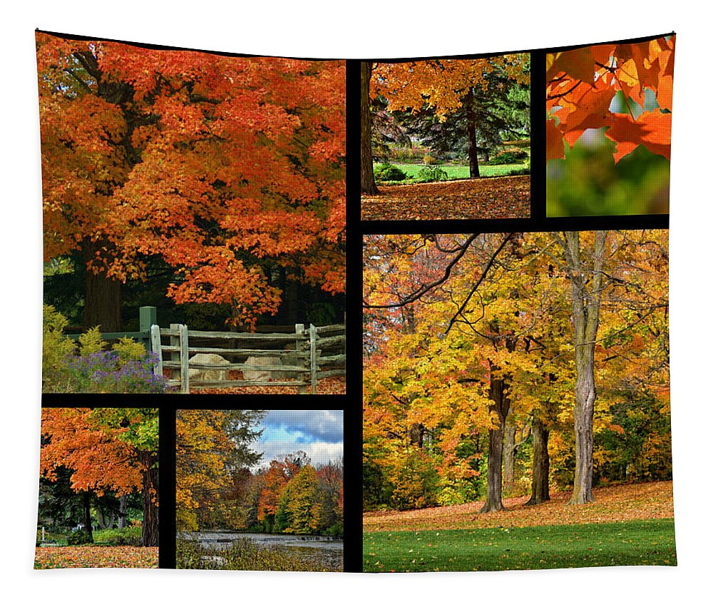 Autumn Tapestry featuring the photograph Autumn Collage by Maria Keady