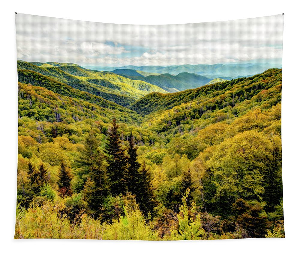 Great Smoky Mountain National Park Tapestry featuring the photograph Autumn Colors In The Smokies by Kay Brewer