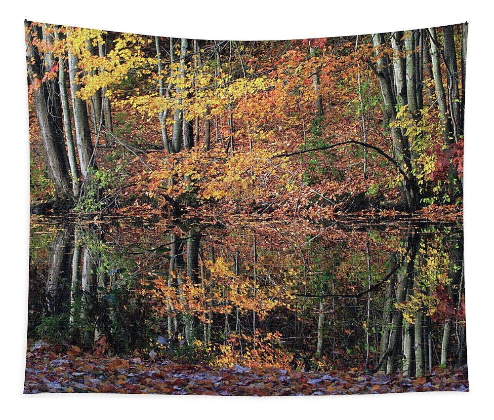 Autumn Tapestry featuring the photograph Autumn Colors Reflect by Karol Livote