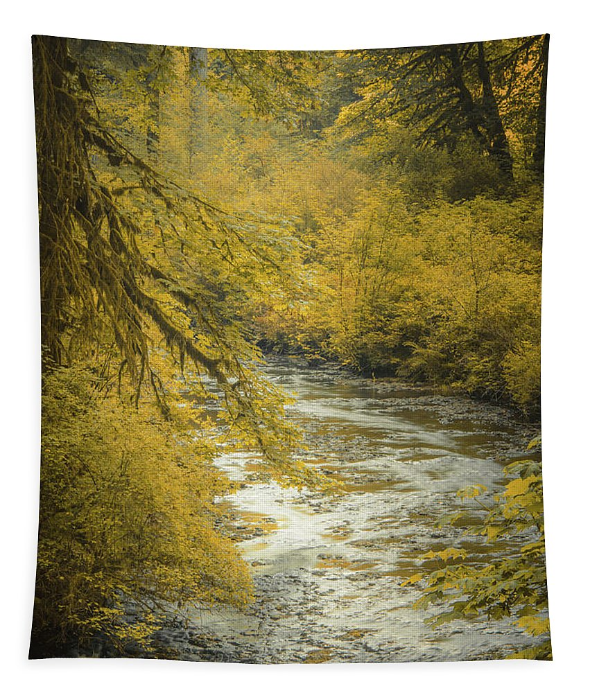 Water Tapestry featuring the photograph Autumn Creek by Don Schwartz