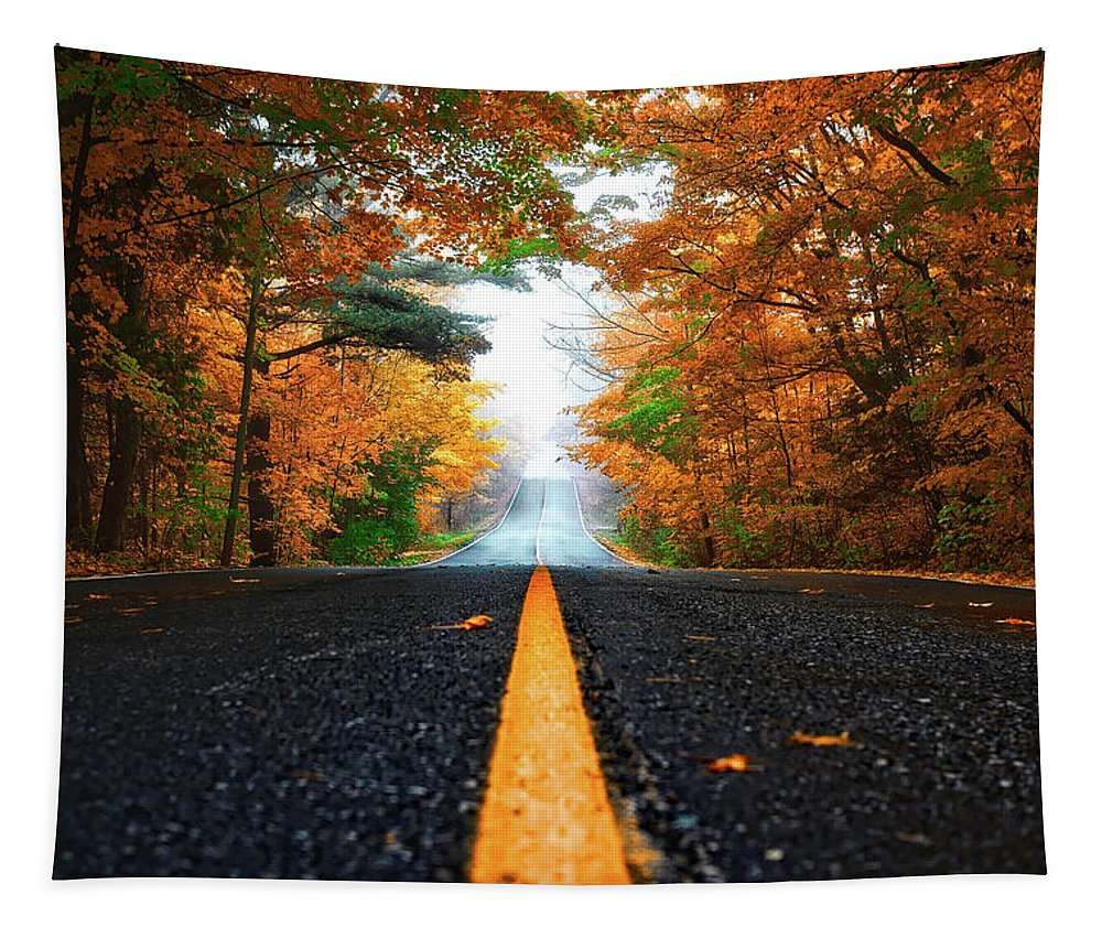 Seasons Tapestry featuring the photograph Autumn Drive by Patrick Tomasso