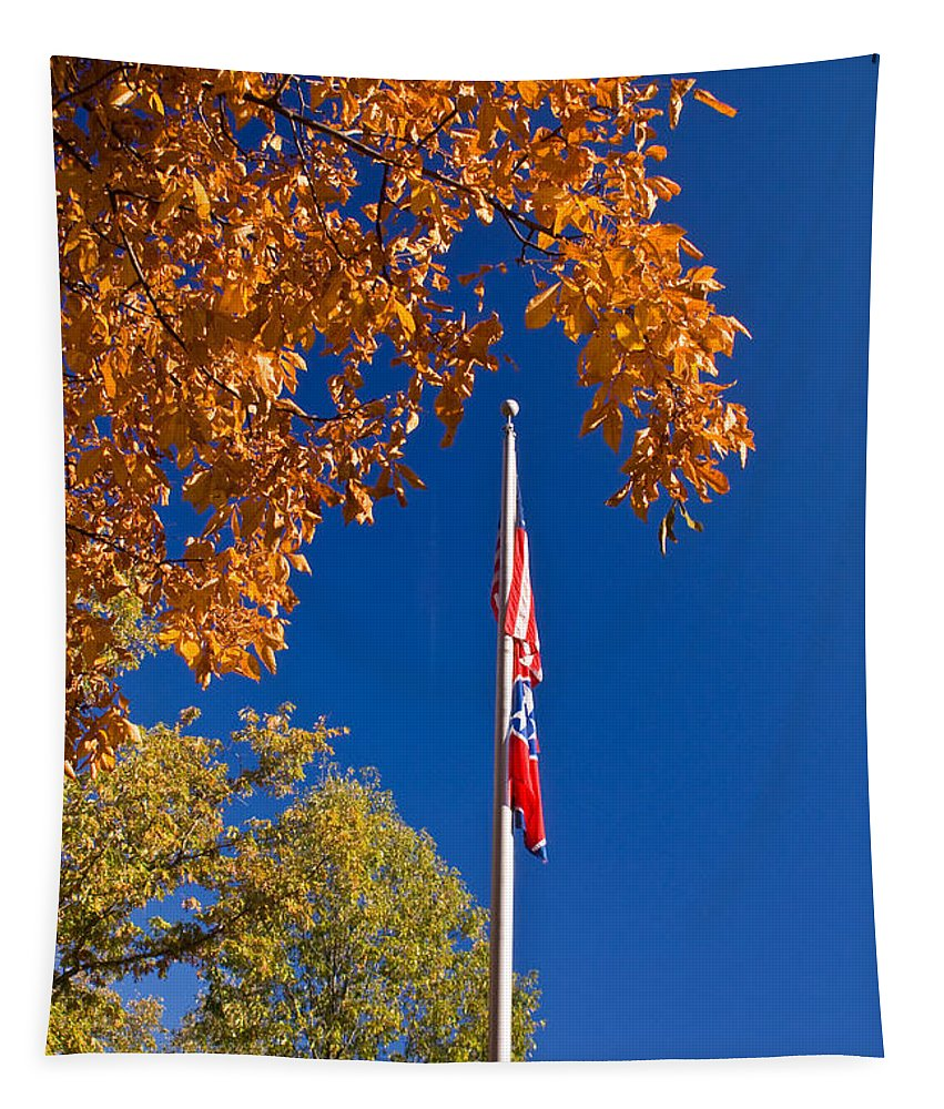 Flag Tapestry featuring the photograph Autumn Flag by Douglas Barnett