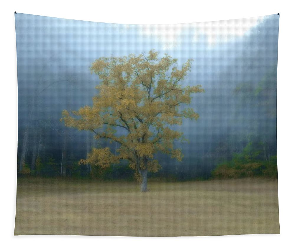 Autumn Fog In Cades Cove Tapestry featuring the photograph Autumn Fog In Cades Cove by Dan Sproul