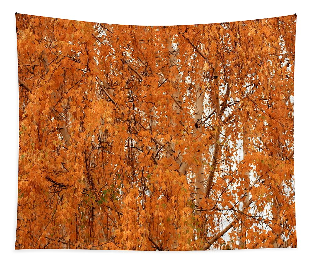 Golden Leaves Tapestry featuring the photograph Autumn Gold by Carol Groenen