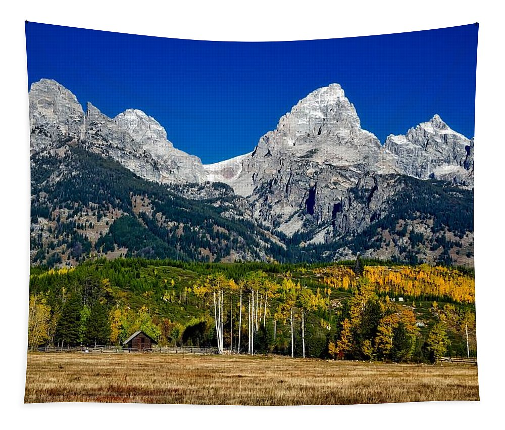 Wyoming Tapestry featuring the photograph Autumn - Grand Teton National Park by Mountain Dreams