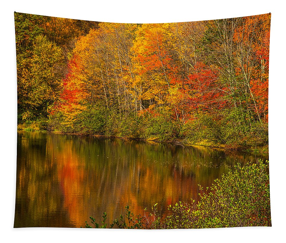 Autumn In Monroe Tapestry featuring the photograph Autumn In Monroe by Karol Livote