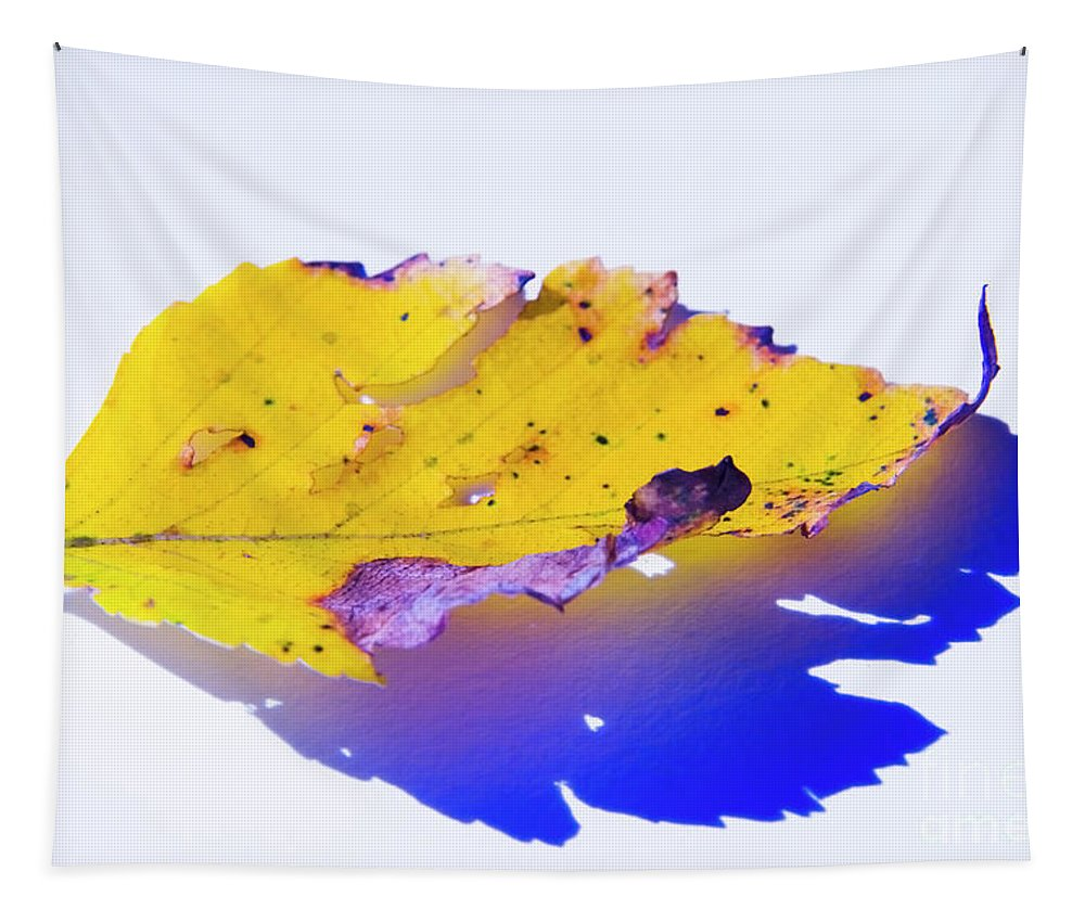 Yellow Leaf Tapestry featuring the photograph Autumn Leaf Abstract by Yulia Kazansky