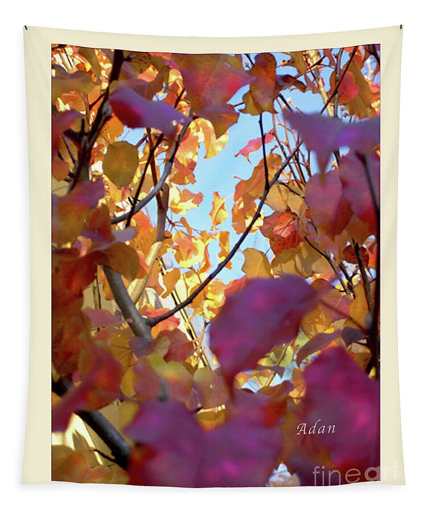 Fall Colors Tapestry featuring the photograph Autumn Leaves In Blue Sky by Felipe Adan Lerma
