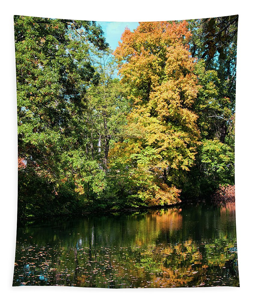Autumn Leaves Tapestry featuring the photograph Autumn Leaves by Phyllis Taylor