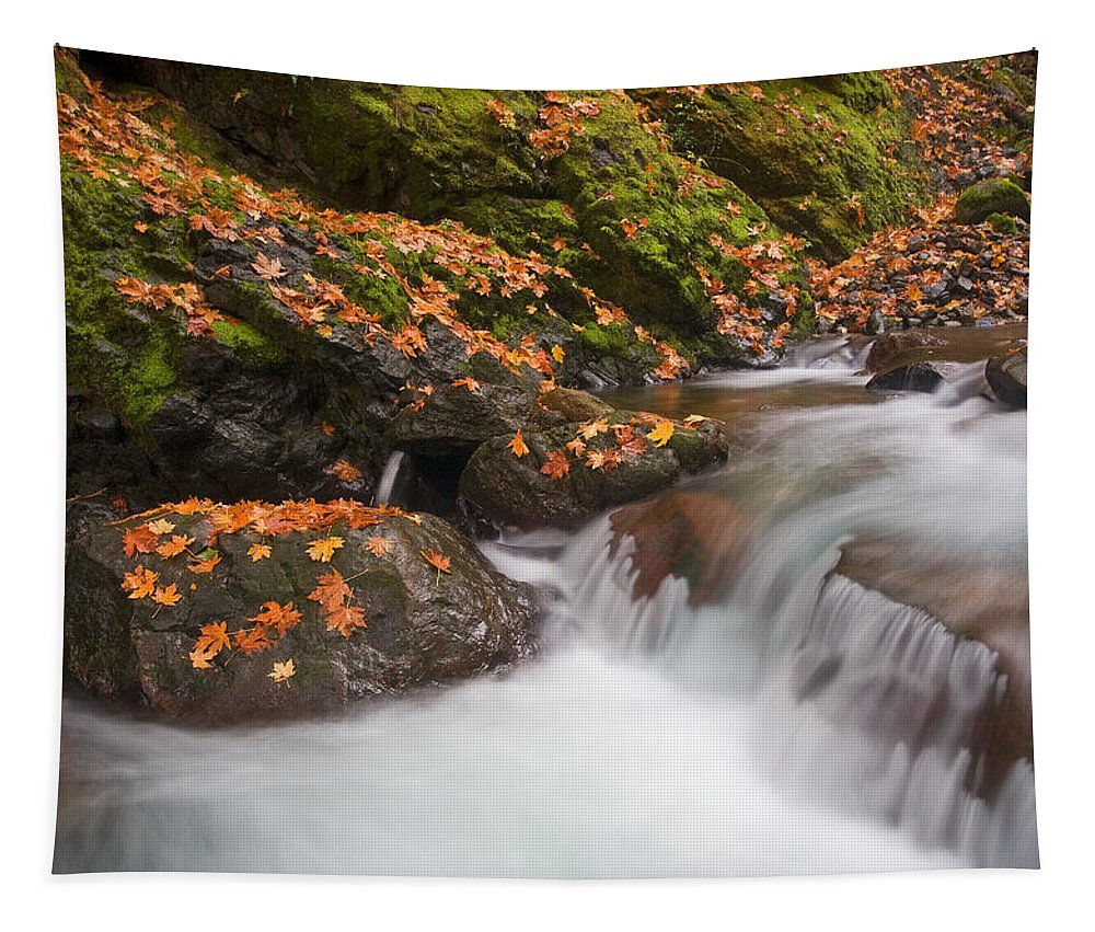 Autumn Tapestry featuring the photograph Autumn Litter by Mike Dawson