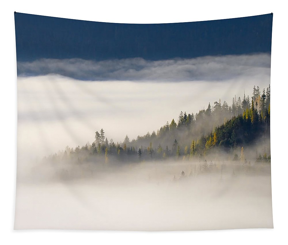 Fog Tapestry featuring the photograph Autumn Morn by Mike Dawson
