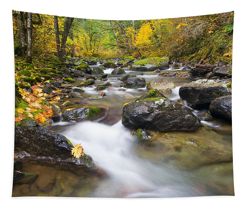 Fall Tapestry featuring the photograph Autumn Passing by Mike Dawson