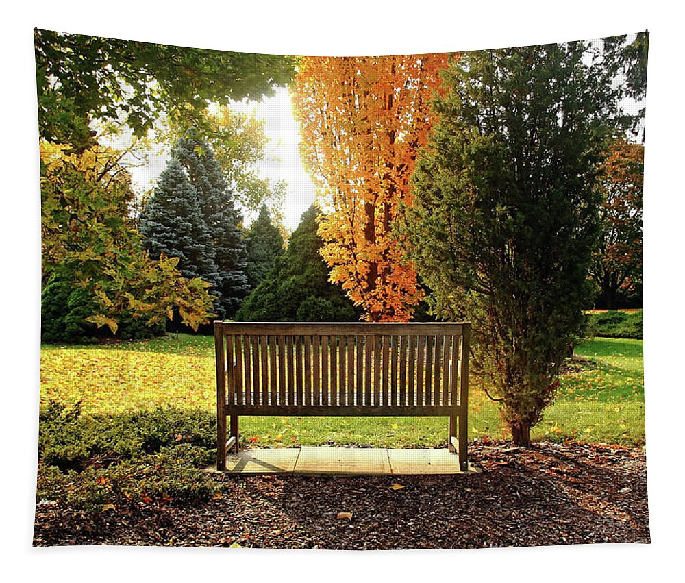Autumn Tapestry featuring the photograph Autumn Quiet by Debbie Oppermann