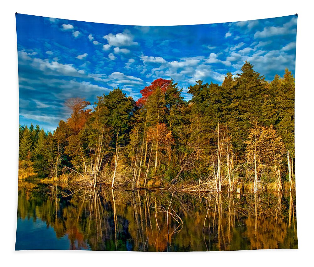 Landscape Tapestry featuring the photograph Autumn Reflection II by Steve Harrington