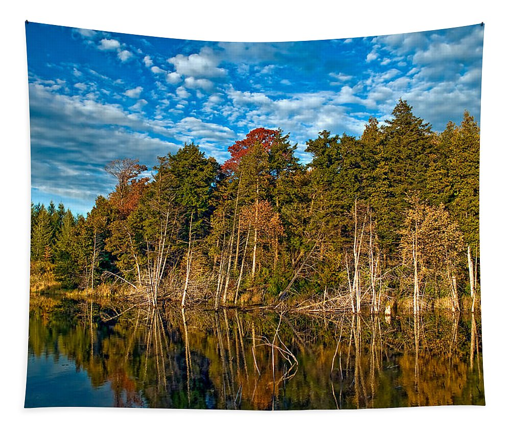 Reflection Tapestry featuring the photograph Autumn Reflection by Steve Harrington