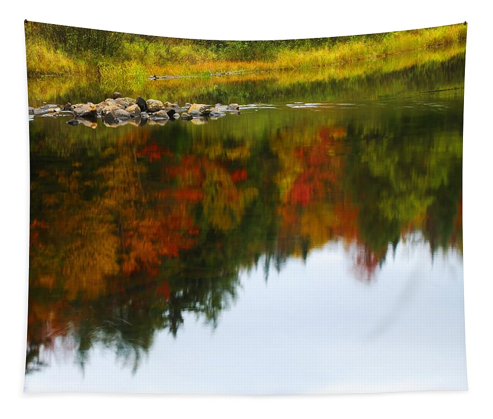 Autumn Tapestry featuring the photograph Autumn Reflection by Tony Beaver