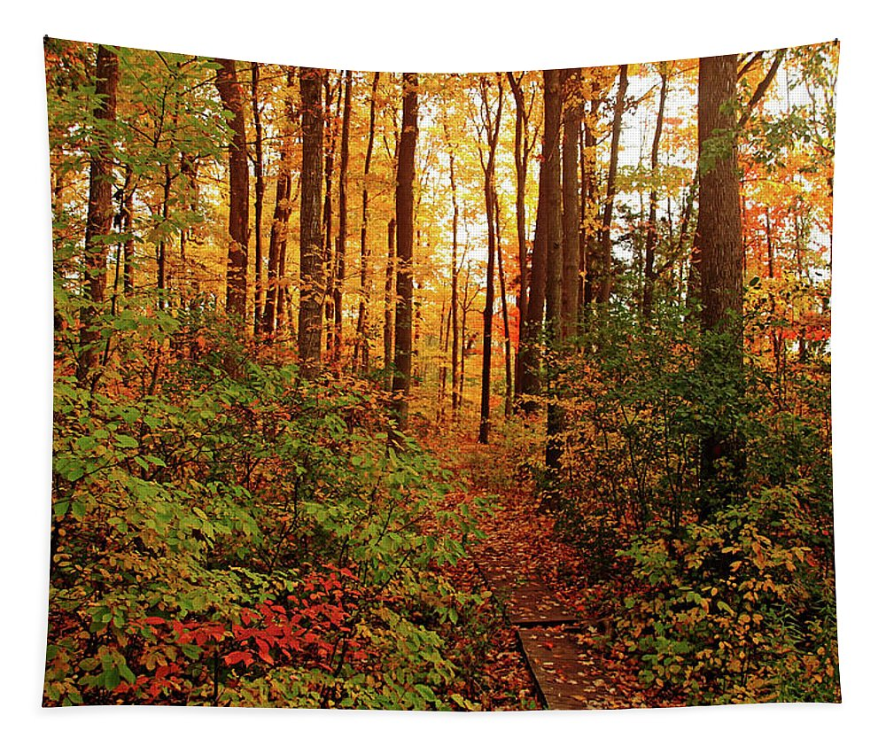 Autumn Tapestry featuring the photograph Autumn Splendor by Debbie Oppermann