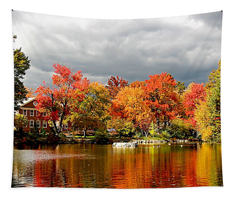 Autumn Tapestry featuring the photograph Autumn Storm Coming by Susan Savad