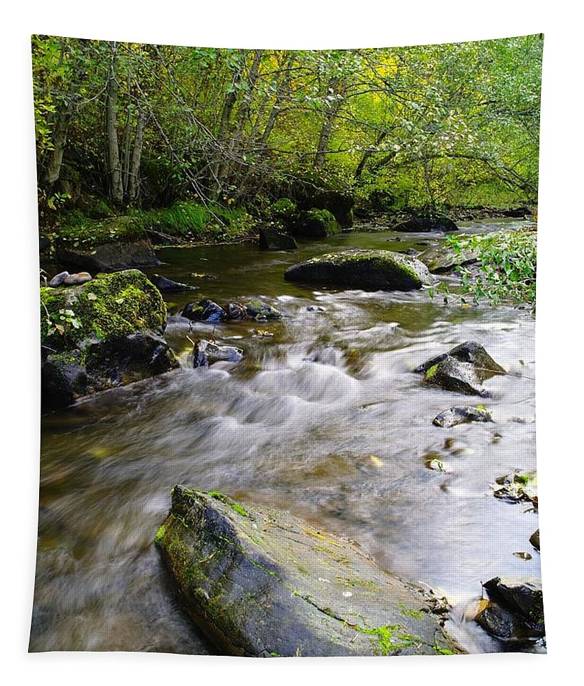 Water Tapestry featuring the photograph Autumn Stream by Jeff Swan