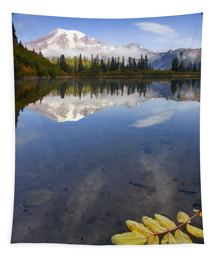 Rainier Tapestry featuring the photograph Autumn Suspended by Mike Dawson