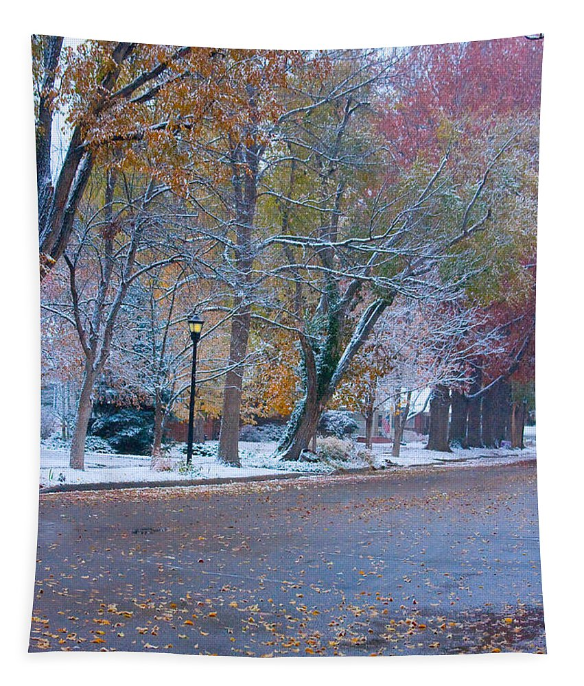 Street Tapestry featuring the photograph Autumn Winter Street Light Color by James BO Insogna